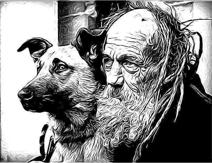 Der Mensch, der Ochse, der Hund und der Affe